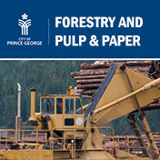 Forestry Sector profile