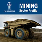 Mining Sector profile