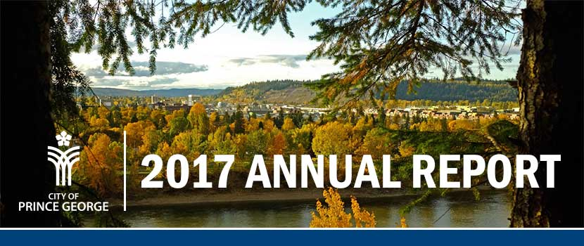 Download the 2017 Annual Report as a PDF